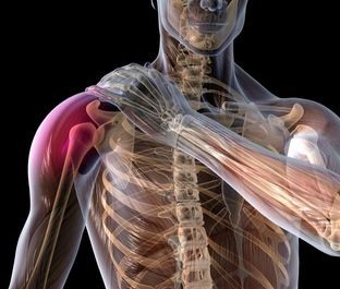 Shoulder-rotator-cuff-tear-healing